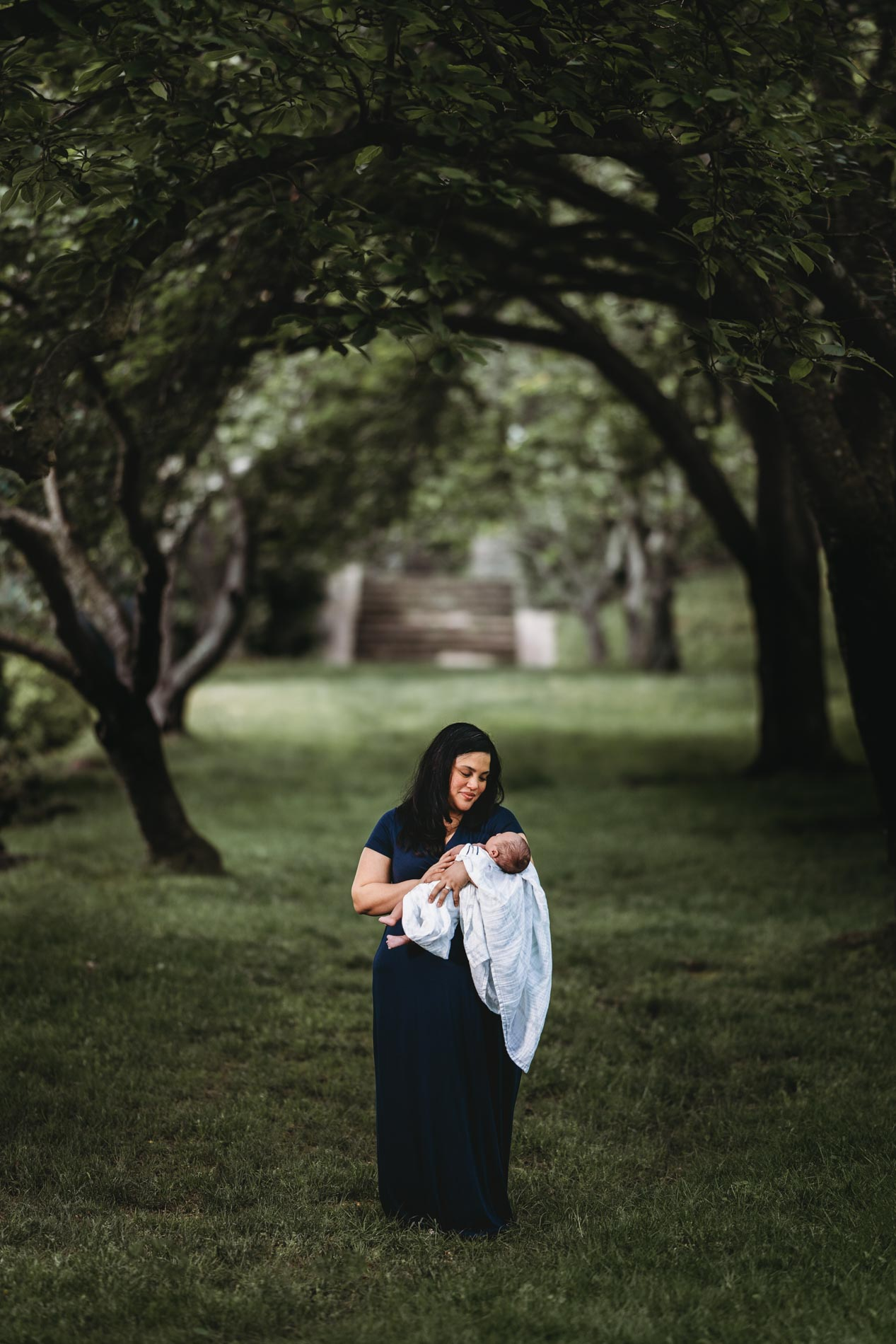 rockville maryland outdoor newborn photographer photography session new mother wearing navy blue dress holding infant in white swaddle outdoors under canopy of trees